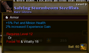 Torchlight 2 Item restriction